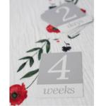deka-na-fotenie-summer-poppy-11-minilove